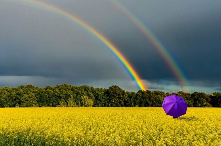 sans pluie il n'y aurait pas d'arc en ciel - no rain no rainbow
