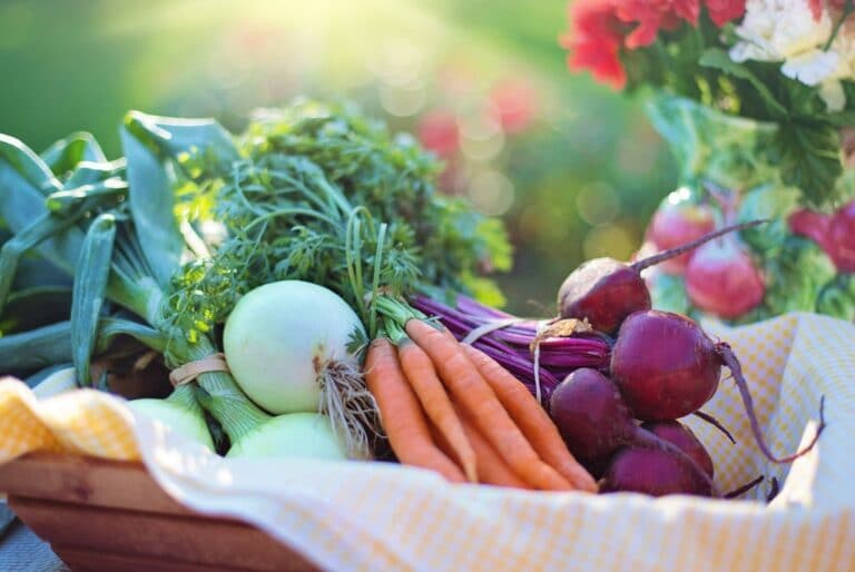 alimentation / Things to look for in your food
